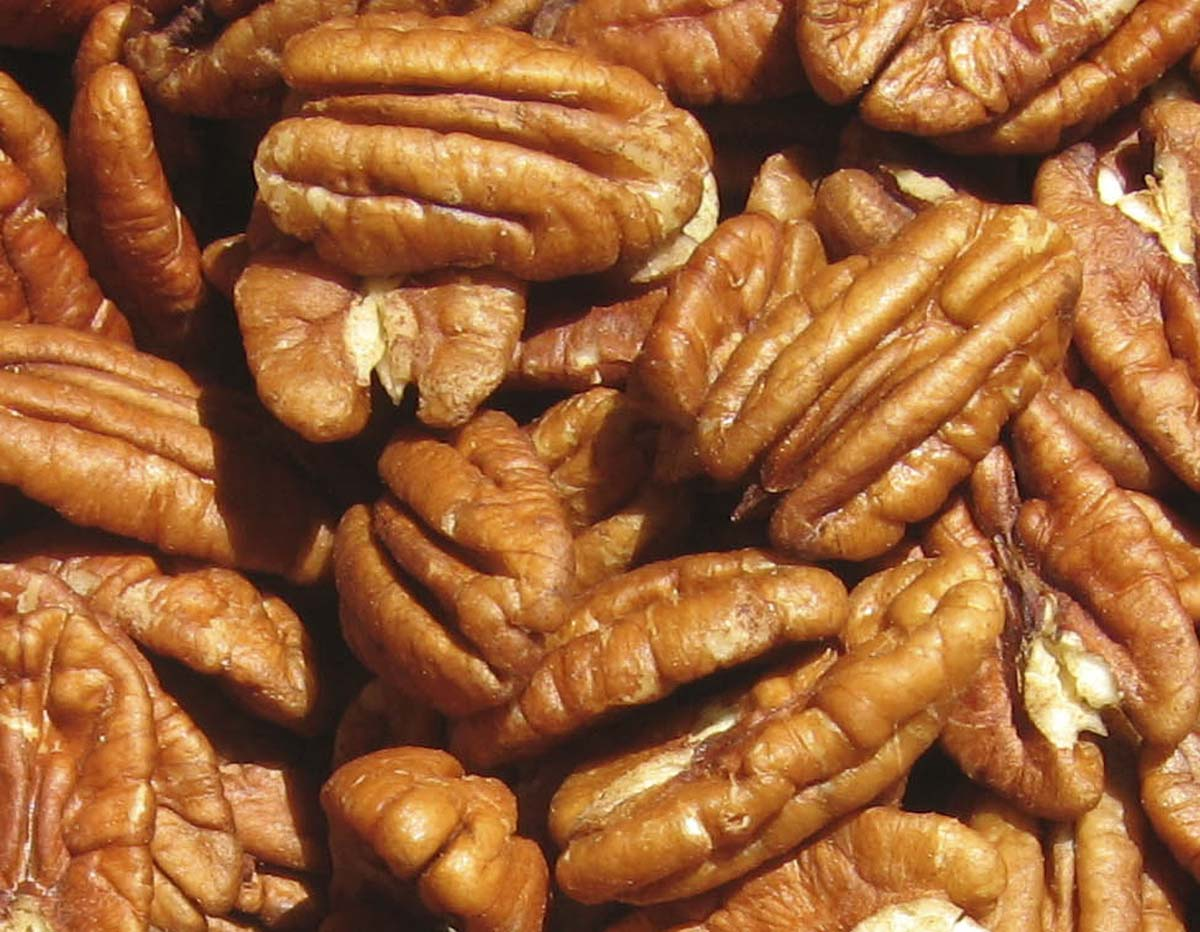 Kitty's Triple Toasted Pecans